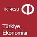 Türkiye Ekonomisi icon