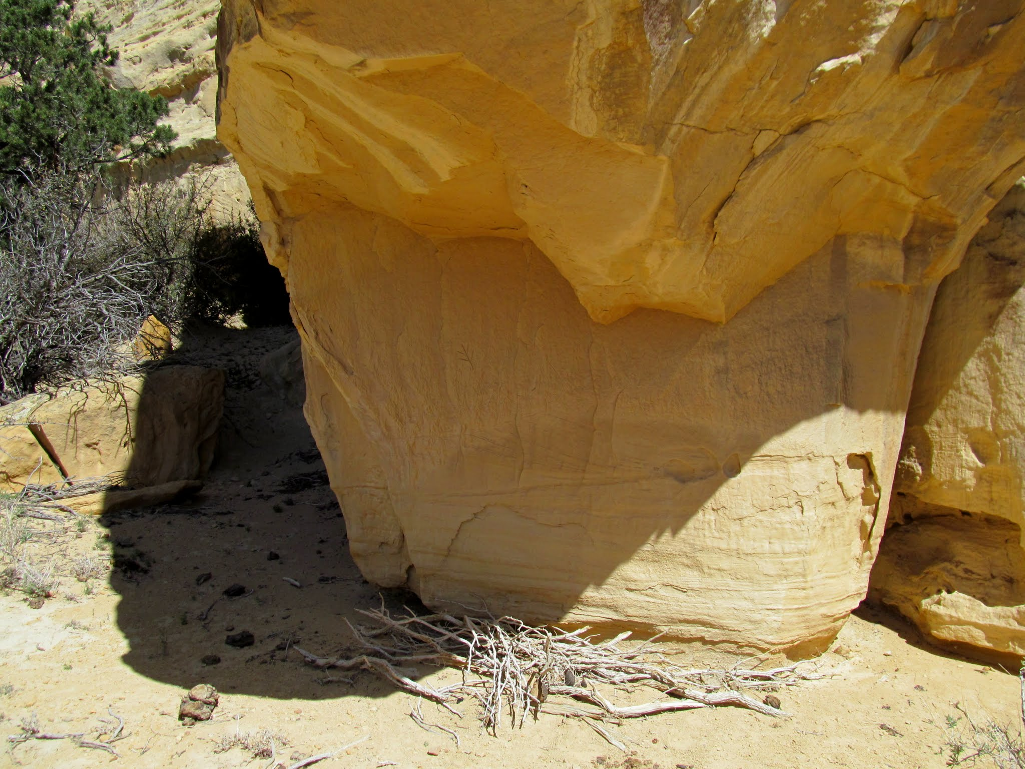 Photo: Overhang with inscriptions and a small pile of fire wood