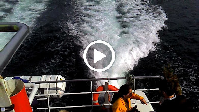 Video: To Beagle channel