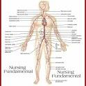 Fundamental Of Nursing icon