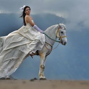 lucky horse by Sapto Nugroho - People Fashion