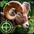 Wild Hunter 3D apk