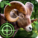 Wild Hunter 3D (game)