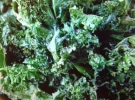Kale Photo By Jessica - The Novice Chef