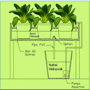 hydroponics - náhled