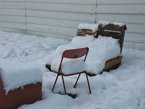 Photo: ברוכים הבאים לסלון הגינה