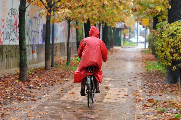 pedalando di nicoletta lindor
