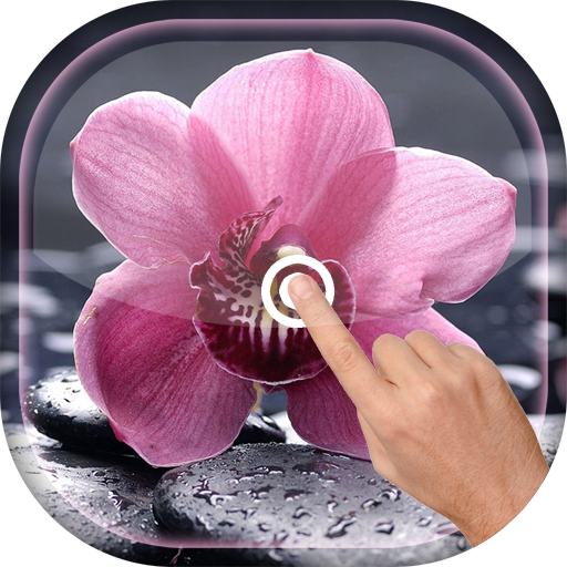 Magic Touch - Orchid LWP