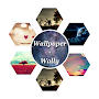 Wallpaper-Wally APK icon