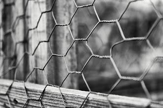 Photo: Hexagonal