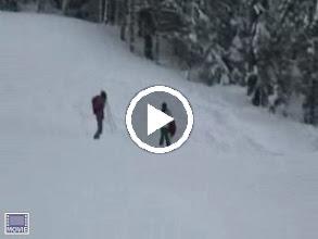 Video: Silvia