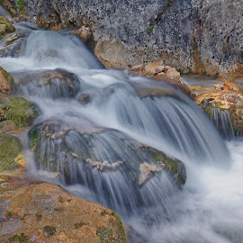 Stream in the Alps by Michaela Firešová - Nature Up Close Water ( stream, long exposure, water )
