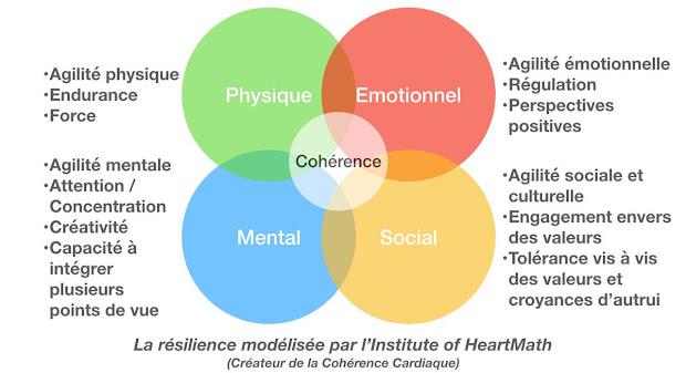 Schéma résilience