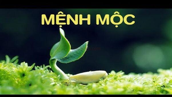 Menh-Moc-menh-cua-choi-non-nay-no