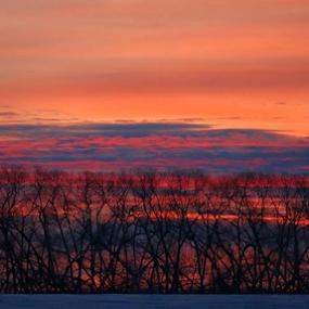 Crayon Sunrise by Jess Trudeau - Landscapes Prairies, Meadows & Fields ( sunrise )