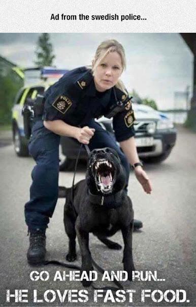 police 4