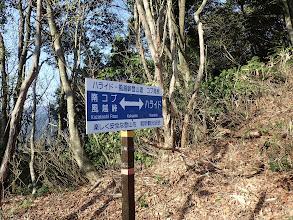 登山道合流