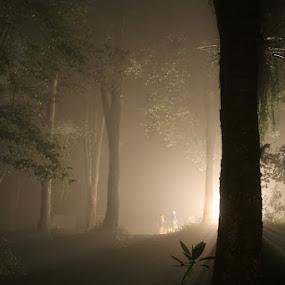 Secret Conspiration by Salahudin Damar Jaya - Landscapes Forests