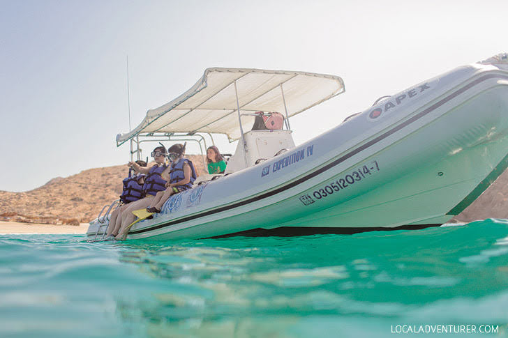 Cabo Snorkeling (Best Things to Do in Cabo San Lucas Mexico).