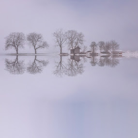Reflections by Jaro Miščevič - Landscapes Waterscapes ( water, winter, waterscape, reflections, trees, house )