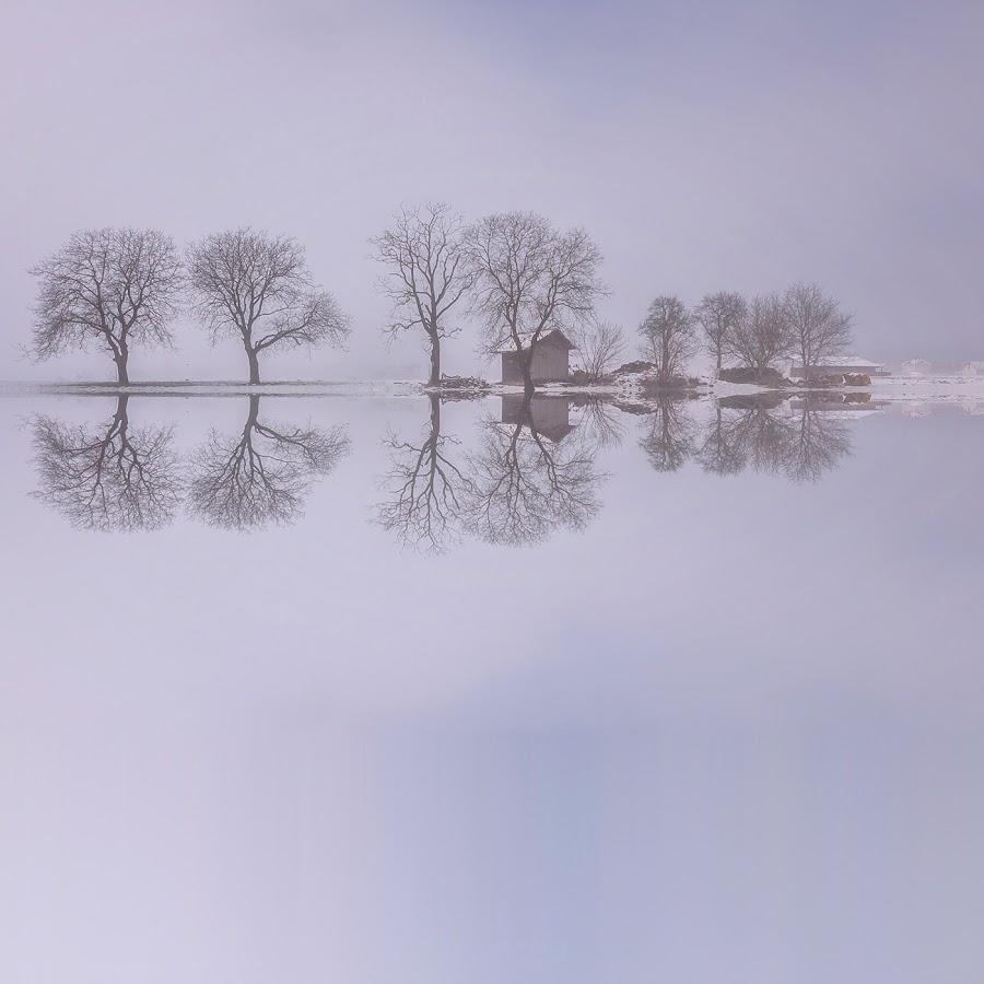 Reflections by Jaro Miščevič - Landscapes Waterscapes ( water, winter, waterscape, reflections, trees, house )
