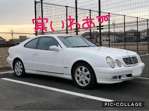 CLK W208 のカスタム事例画像 猫田慎之介さんの2019年01月28日13:25の投稿