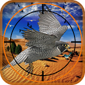Birds Hunter in Desert