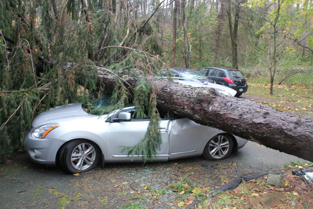 Image result for car insurance calamities
