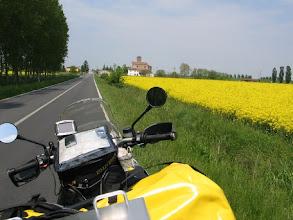 Photo: ... durch blühende Felder ...