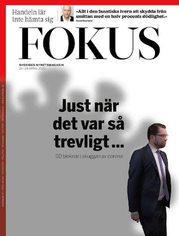Fokus #17/20