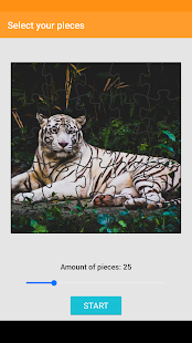 Tiger Jigsaw Puzzle - náhled