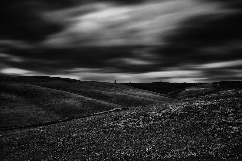 Black & White Val d'Orcia  di nicolapezzatini