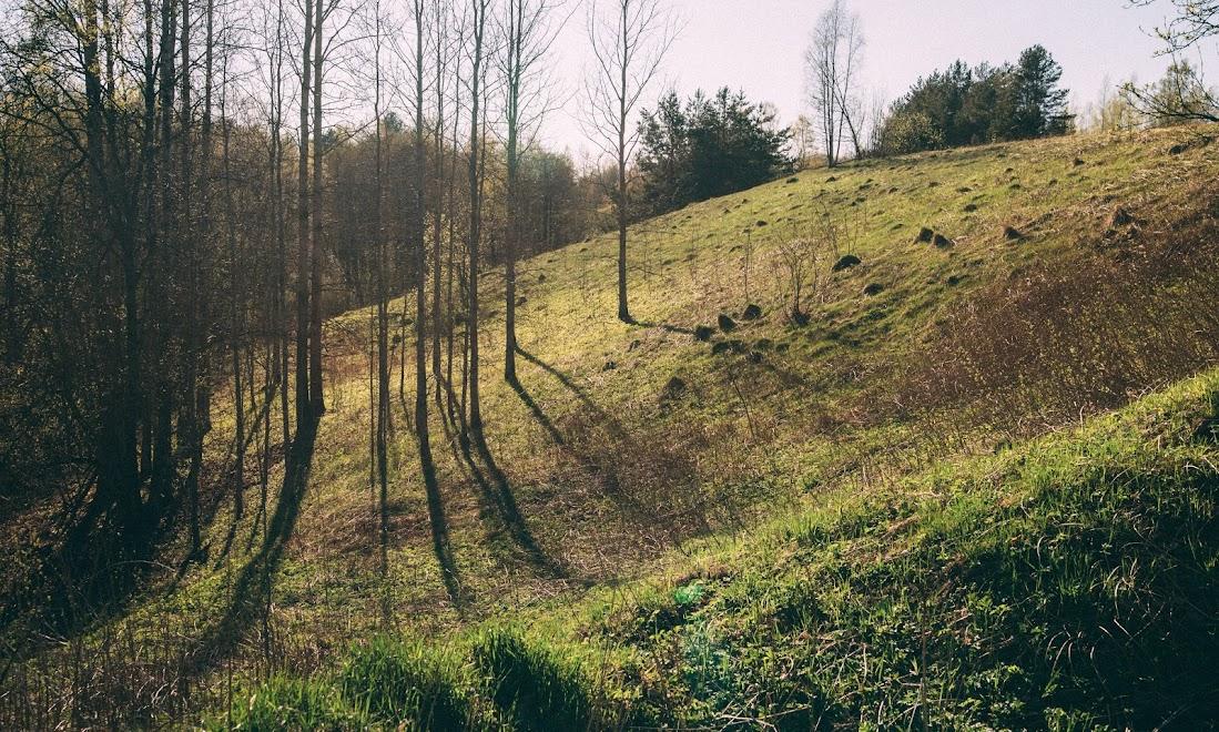 Холмы в ленинградской области