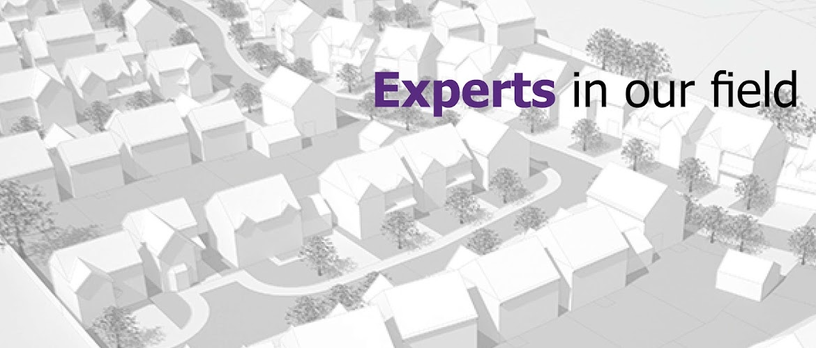 Experts in the construction, property and housing sectors