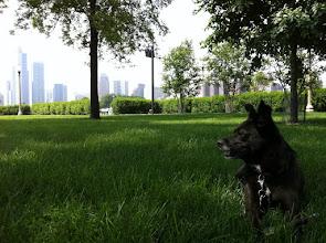 Photo: Malia at Grant Park, Chicago, IL