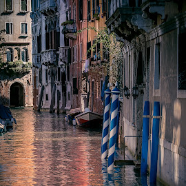Colori di Venezia by Rob Menting - City,  Street & Park  Historic Districts ( canon, building, europe, 70d, italië, travel, architecture, canon eos 70d, city, venezia, eos, italia, venetië )