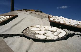 Photo: 03136 ウランバートル/牧民の家/ゲルの屋根に乳製品を干す