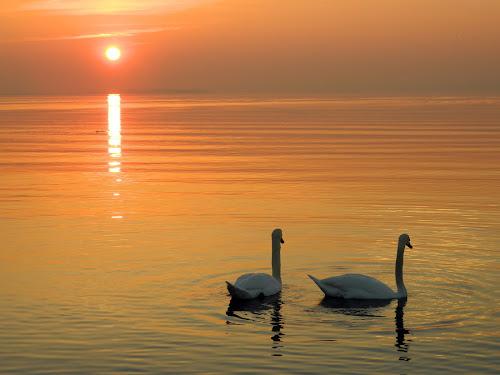 Lago. di Alessia