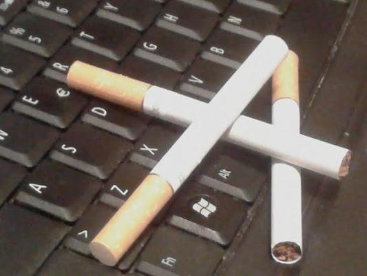X fumante di rosa88