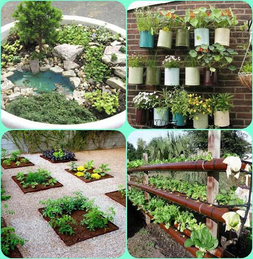 Download diy gardening ideas for pc - Garden ideas diy ...