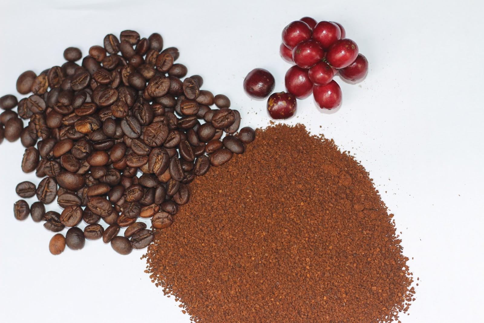 Các bạn nên trang bị kiến thức về cách nhận biết cà phê nguyên chất thật và giả