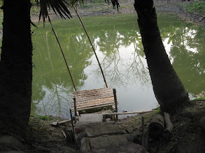 Photo: The pond in the premises
