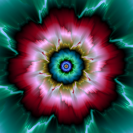 Flower 55 by Cassy 67 - Illustration Abstract & Patterns ( fractal )