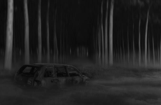 Il mistero del bosco di angelo27