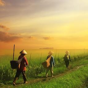 Hope by Eli Supriyatno - Digital Art People ( indonesia, art )