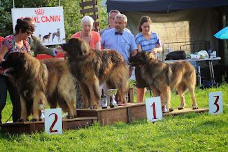 Photo: Le podium des Champions Mâles