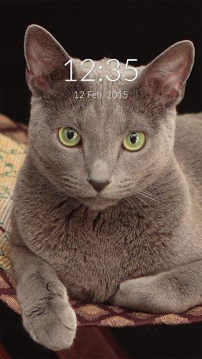 Russian Blue Wall Lock