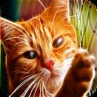 Stalker Chat fond d'écran HD icon