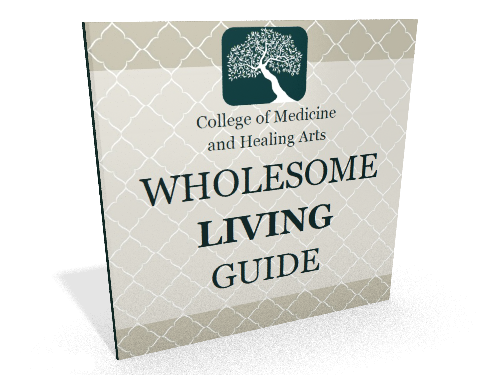 Wholesome Living Guide Mockup