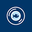 Snapa icon